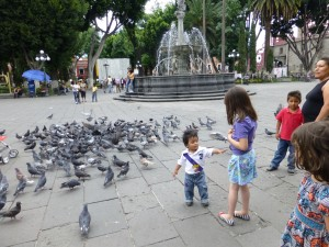 pic with pigeons