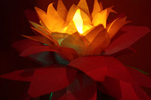 Lotus Lanterns for Wesak